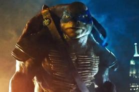 Leonardo Turtle 2014