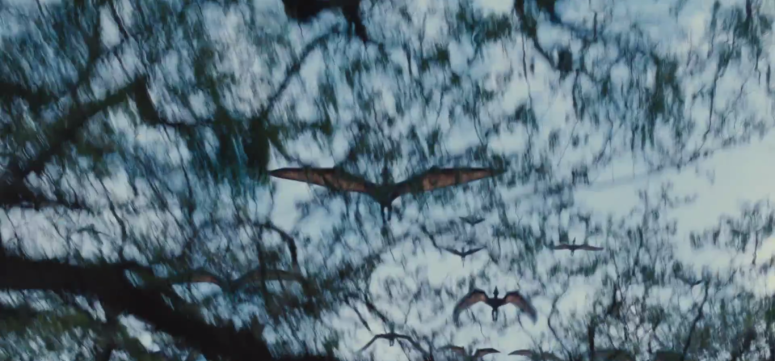 Jurassic World TV Spot Pterodactyls In the Trees