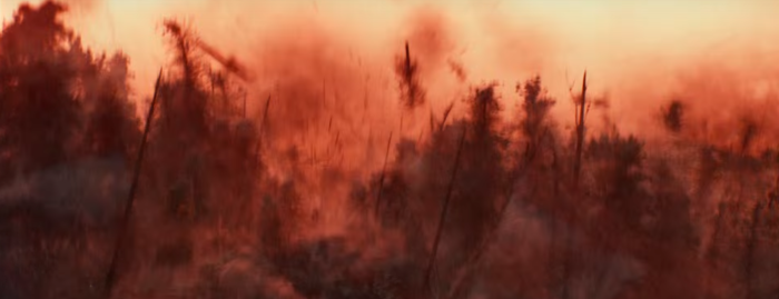 Star Wars The Force Awakens Final Trailer #3 Forest Explodes Red