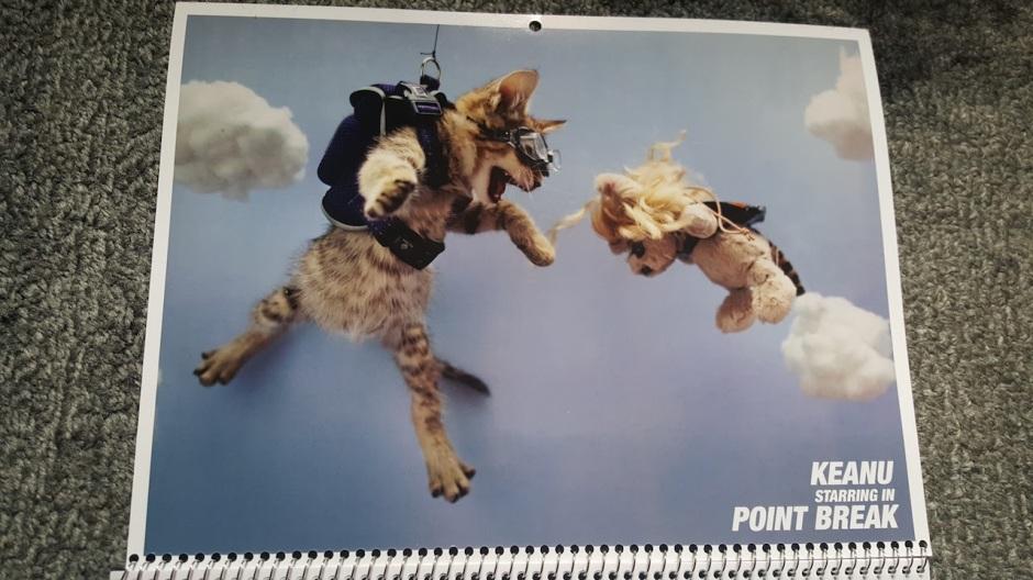 Kitten Keanu Point Break Calender Page
