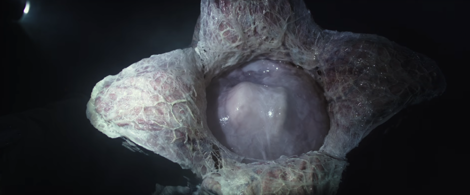 alien-covenant-trailer-2-09-egg-opens